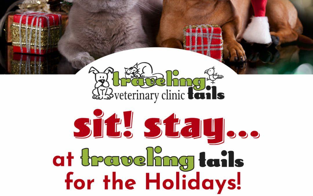 Holiday Pet Boarding